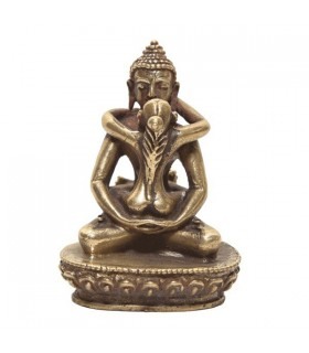 Shakti Buddha