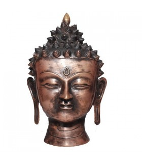 Largest Head Statue of the Amoghshiddhi Buddha