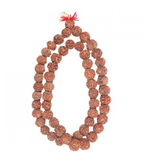 Five Mukhi (Faced)  Rudraksha Mala